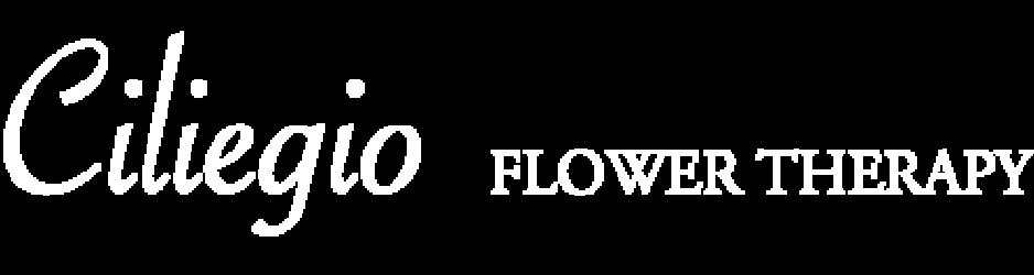 ciliegio-fiore.com