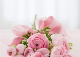 花育で「想像力」と「応用力」を鍛える