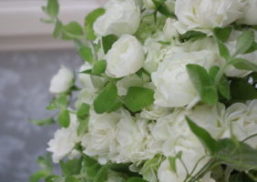 白色の花(ホワイト系の花)に惹かれるとき