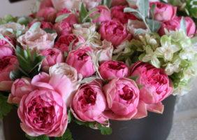 特別な日の花贈り スペシャルギフト