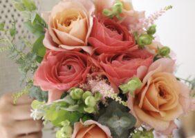 騒つく日々にピンク色の花を。